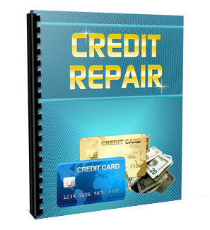 Credit Repair PLR Niche Pack