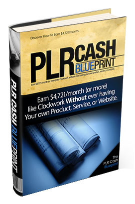 PLR Cash Blueprint 2.0
