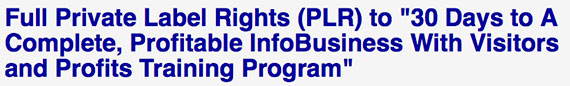 30 Days to Successful InfoBusiness PLR