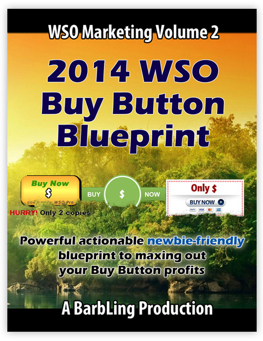 2014 WSO Buy Button Blueprint