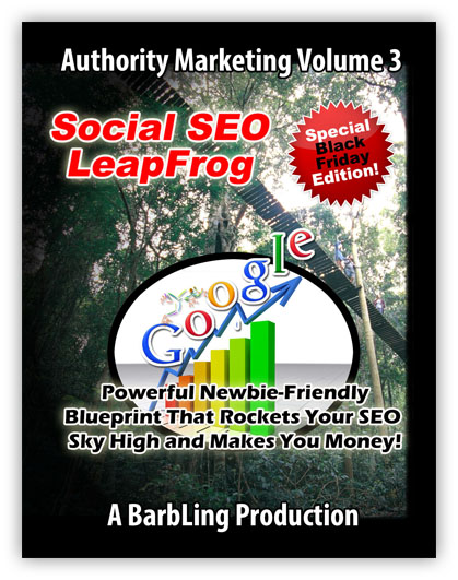 Social Seo LeapFrog Revised