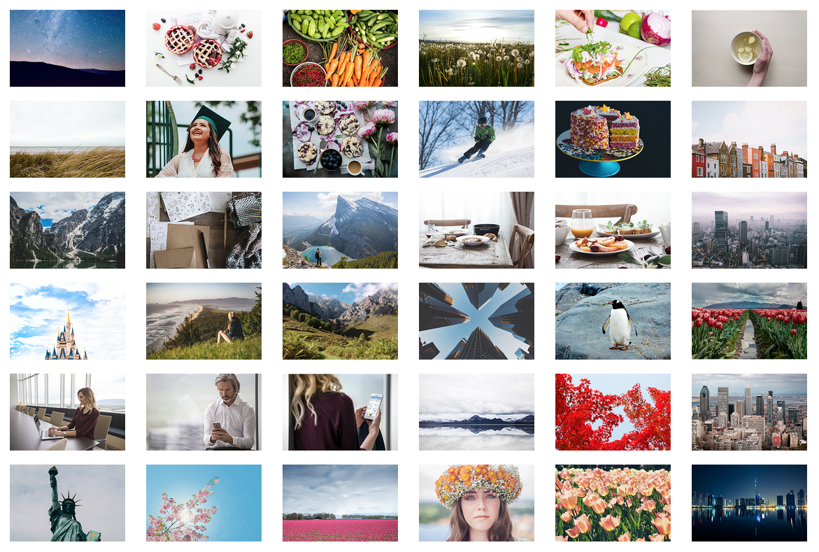 2016 Stock Images Bargain Bounty